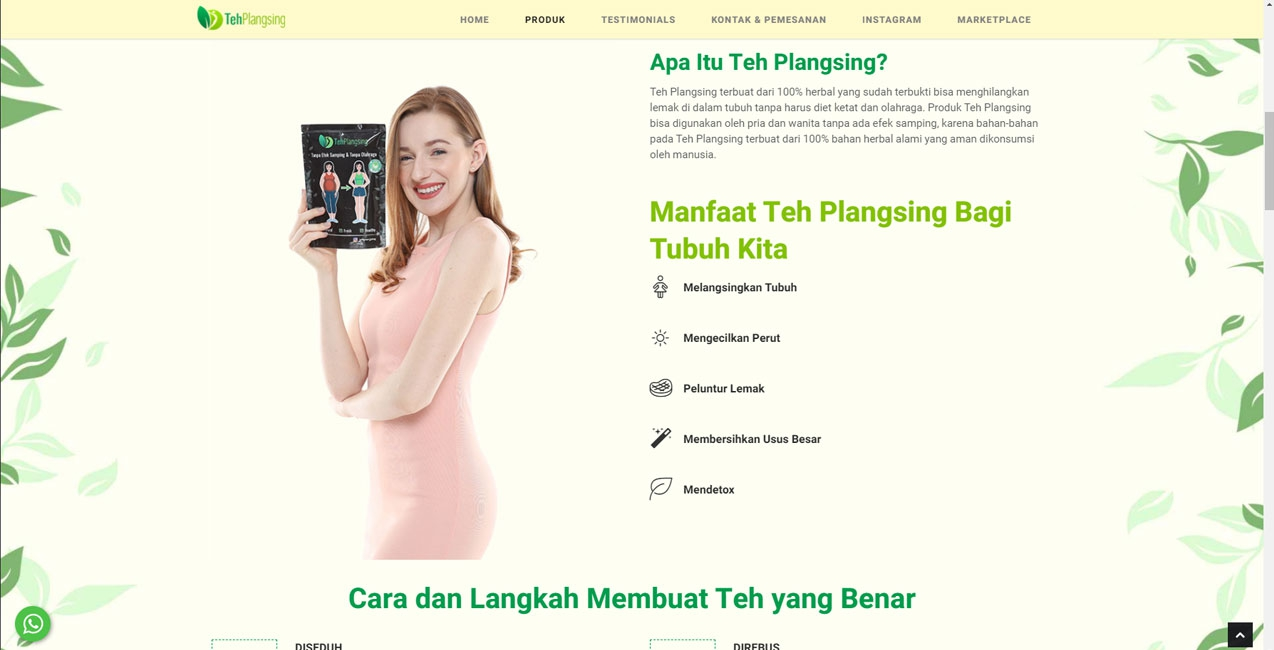 tehplangsing-website-about